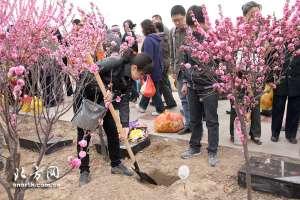 资讯生活天津:憩园举行第7次植树葬 免费赠送可降解骨灰盒